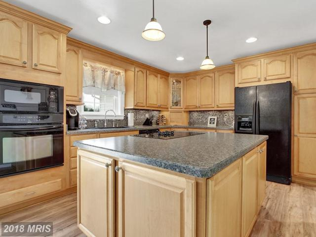 3 Teresa Marie Court, Millers, MD 21102 (#BC10133796) :: The Gus Anthony Team