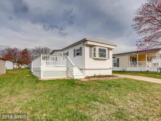 3604 Dahlia, Middle River, MD 21220 (#BC10204741) :: The Dailey Group