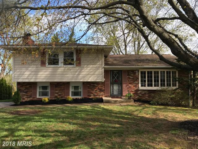 252 Chantrey Road, Lutherville Timonium, MD 21093 (#BC10215276) :: Dart Homes