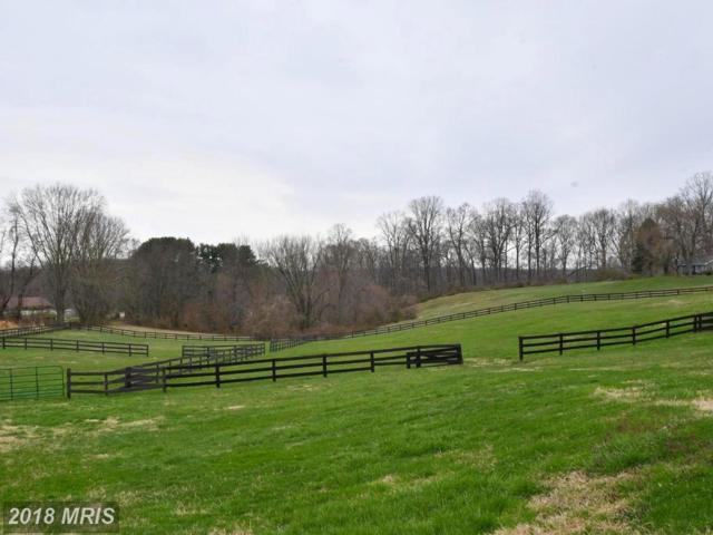 12422 Regwood Road, Hydes, MD 21082 (#BC10216255) :: Town & Country Real Estate