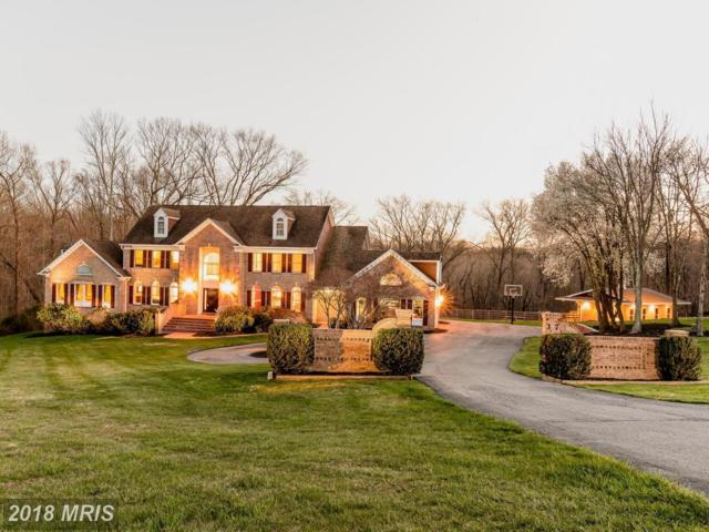 17 Brian Daniel Court, Reisterstown, MD 21136 (#BC10216821) :: The Maryland Group of Long & Foster
