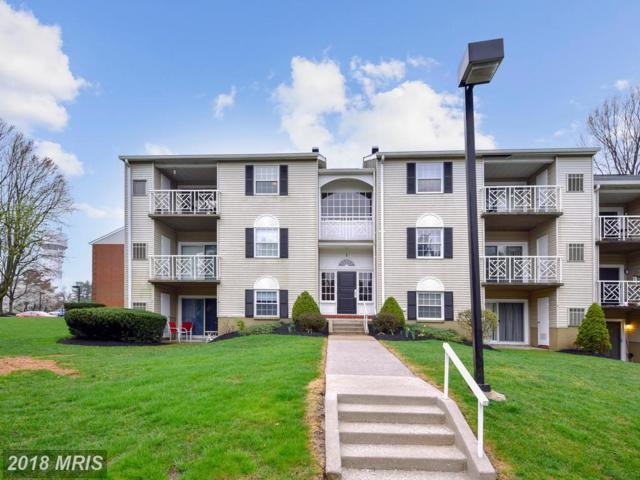 1 Elphin Court #301, Lutherville Timonium, MD 21093 (#BC10220471) :: Dart Homes