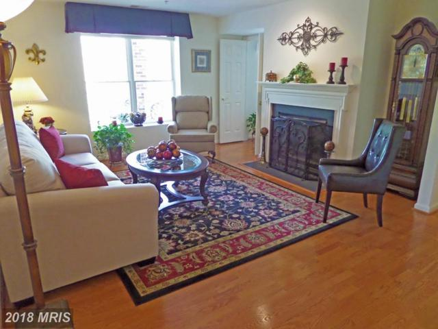 12030 Tralee Road #306, Lutherville Timonium, MD 21093 (#BC10231987) :: Pearson Smith Realty