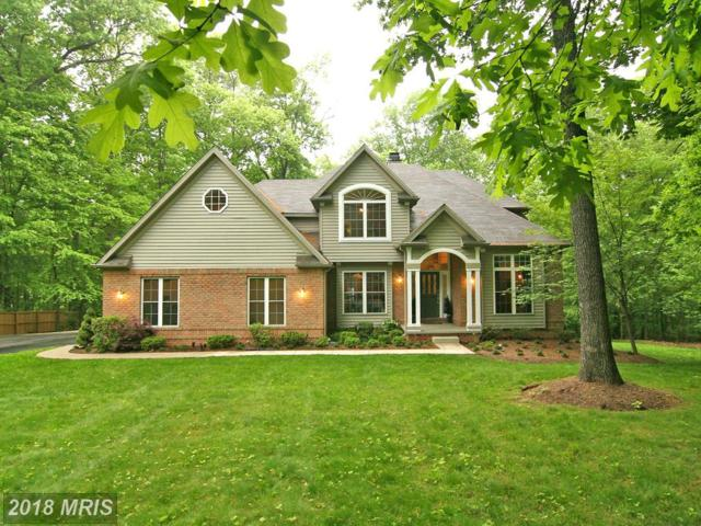 14 Brian Daniel Court, Reisterstown, MD 21136 (#BC10239204) :: The Maryland Group of Long & Foster