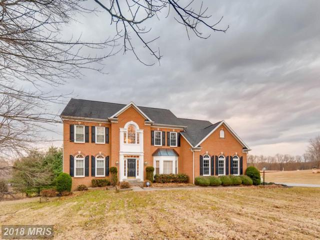 2518 Chestnut Woods Court, Reisterstown, MD 21136 (#BC10242141) :: Pearson Smith Realty