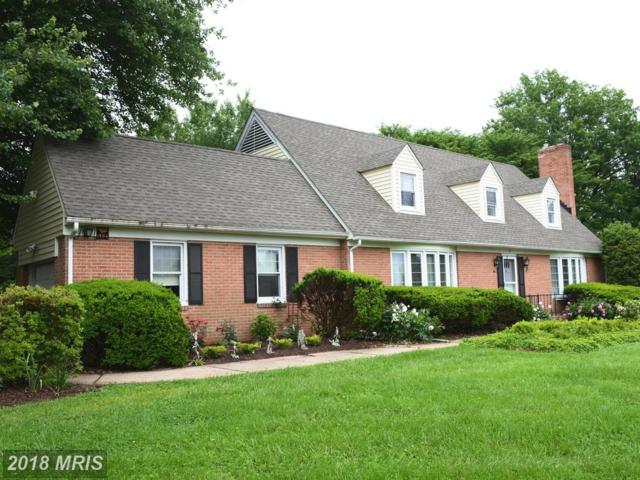 1 Yorkview Drive, Lutherville Timonium, MD 21093 (#BC10255942) :: SURE Sales Group