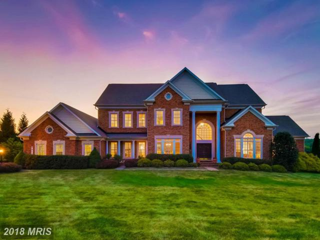 2412 Long Ridge Road, Reisterstown, MD 21136 (#BC10286379) :: Keller Williams Pat Hiban Real Estate Group