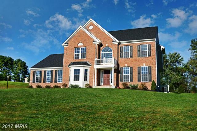12203-B Fischer, Kingsville, MD 21087 (#BC9822396) :: Pearson Smith Realty