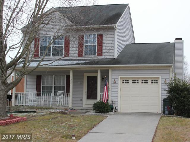 12841 Sand Dollar Way, Baltimore, MD 21220 (#BC9837173) :: Pearson Smith Realty