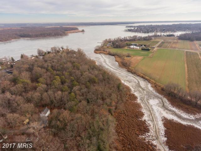 6719 Mallard Road, Middle River, MD 21220 (#BC9838815) :: Pearson Smith Realty
