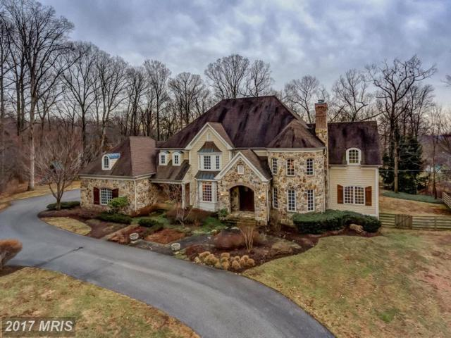 11 Spring Forest Court, Owings Mills, MD 21117 (#BC9857771) :: Pearson Smith Realty