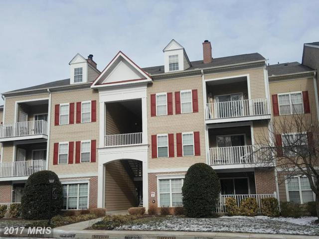 6 Tyler Falls Court N, Baltimore, MD 21209 (#BC9861220) :: LoCoMusings