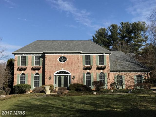 12603 Waterspout Court, Owings Mills, MD 21117 (#BC9865430) :: LoCoMusings