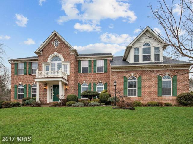 8 Spring Knoll Court, Lutherville Timonium, MD 21093 (#BC9887462) :: LoCoMusings