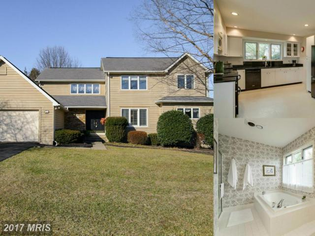 6 Red Maple Court, Owings Mills, MD 21117 (#BC9923973) :: LoCoMusings