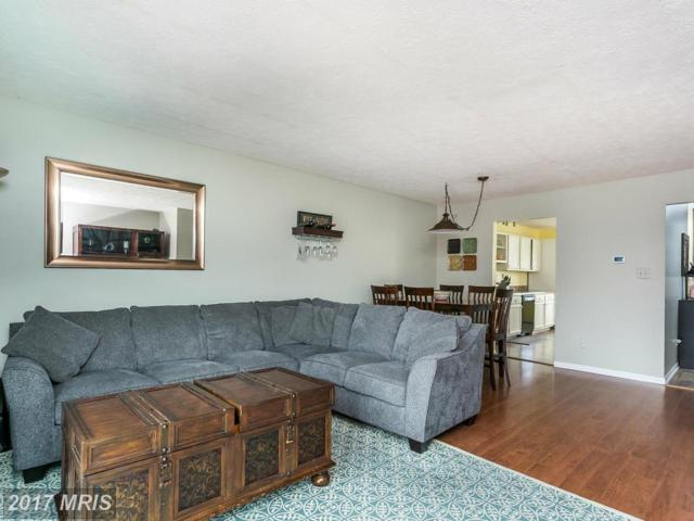 3905 Hunt Harbor Road, Baltimore, MD 21220 (#BC9936659) :: Pearson Smith Realty