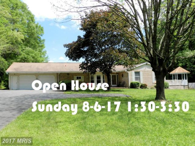 5602 Bush Street, White Marsh, MD 21162 (#BC9939310) :: Pearson Smith Realty