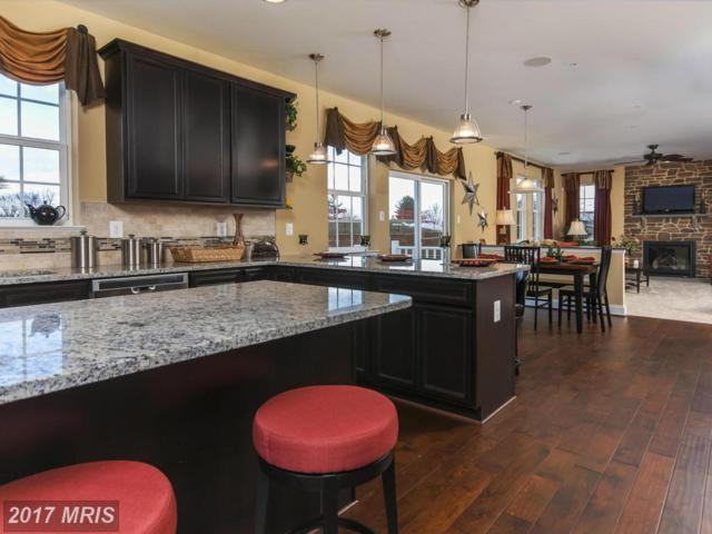 1008 Quietwood Court E #7, Reisterstown, MD 21136 (#BC9955779) :: LoCoMusings