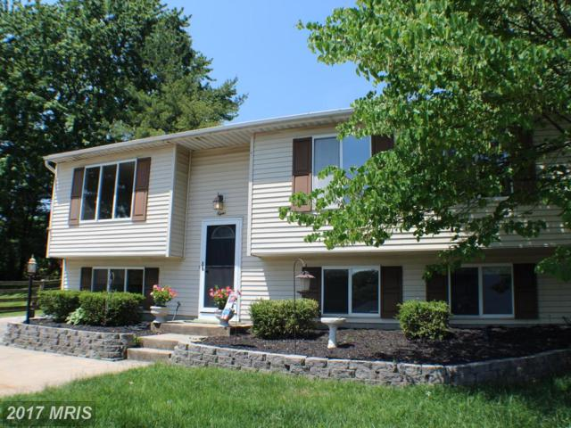 8 Stable Gate Court, Perry Hall, MD 21128 (#BC9959801) :: LoCoMusings