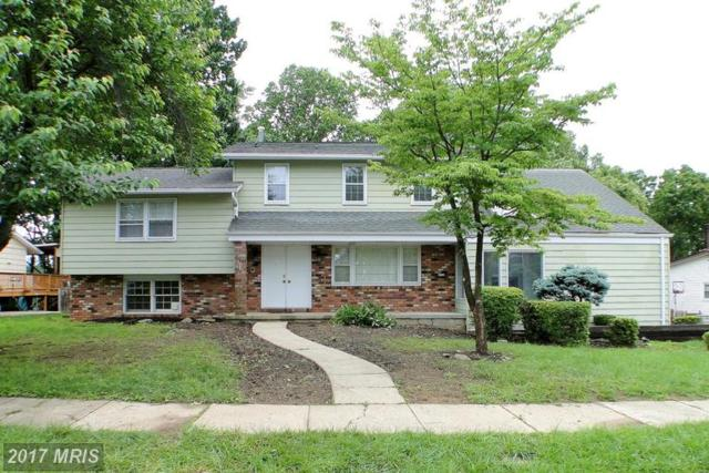 8232 Brattle Road, Pikesville, MD 21208 (#BC9960668) :: LoCoMusings