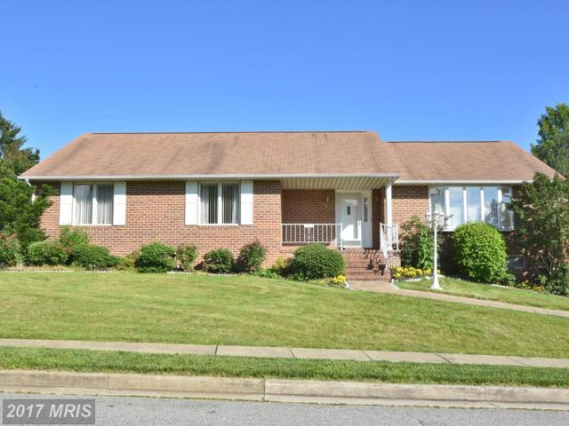 9213 Greenhouse Circle, Baltimore, MD 21236 (#BC9972558) :: Pearson Smith Realty