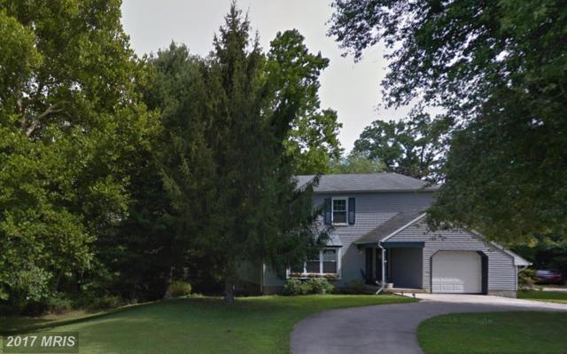 9316 Oak White Road, Baltimore, MD 21236 (#BC9974993) :: Pearson Smith Realty