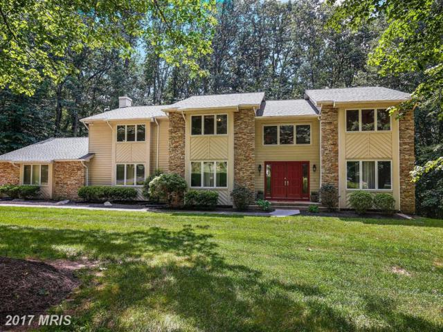 11103 Hidden Trail Drive, Owings Mills, MD 21117 (#BC9979931) :: Pearson Smith Realty