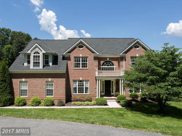 19902 Quiet Valley Court, Parkton, MD 21120 (#BC9980675) :: Pearson Smith Realty