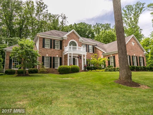 2615 Chestnut Woods Court, Reisterstown, MD 21136 (#BC9981320) :: LoCoMusings