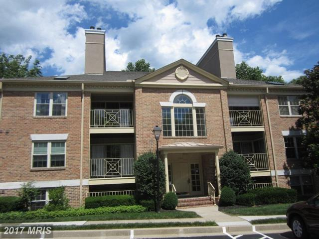 14217 Quail Creek Way #302, Sparks, MD 21152 (#BC9983403) :: Pearson Smith Realty