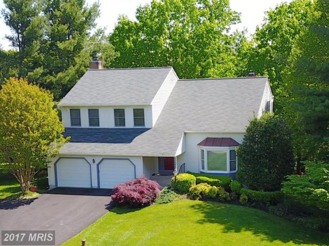 18827 Fox Chase Court, Parkton, MD 21120 (#BC9998377) :: The Lobas Group | Keller Williams