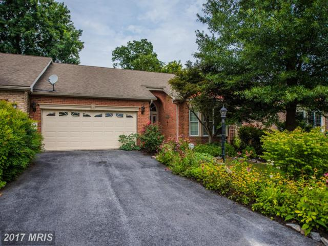 17 Swallow Court, Falling Waters, WV 25419 (#BE10013236) :: Pearson Smith Realty