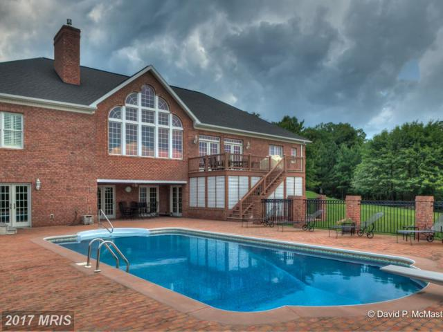 224 Onyx Drive, Hedgesville, WV 25427 (#BE10018346) :: LoCoMusings