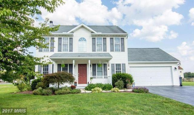 26 Carrington Drive, Falling Waters, WV 25419 (#BE10020788) :: Pearson Smith Realty