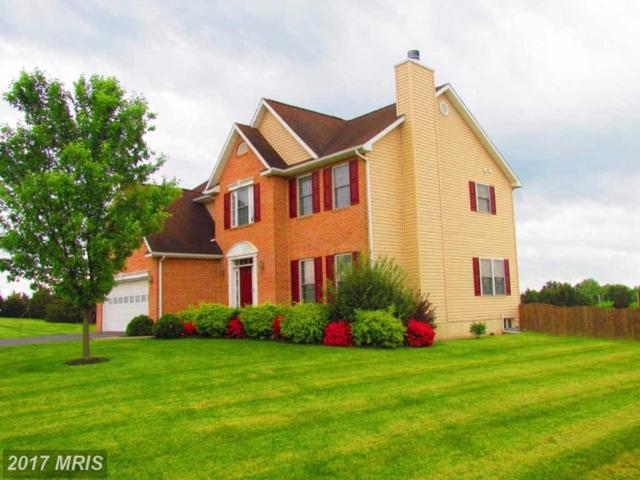 981 Brown Road, Martinsburg, WV 25404 (#BE10022777) :: Pearson Smith Realty