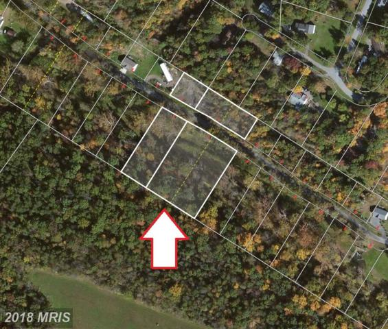 Currency Drive, Bunker Hill, WV 25413 (#BE10026892) :: Pearson Smith Realty