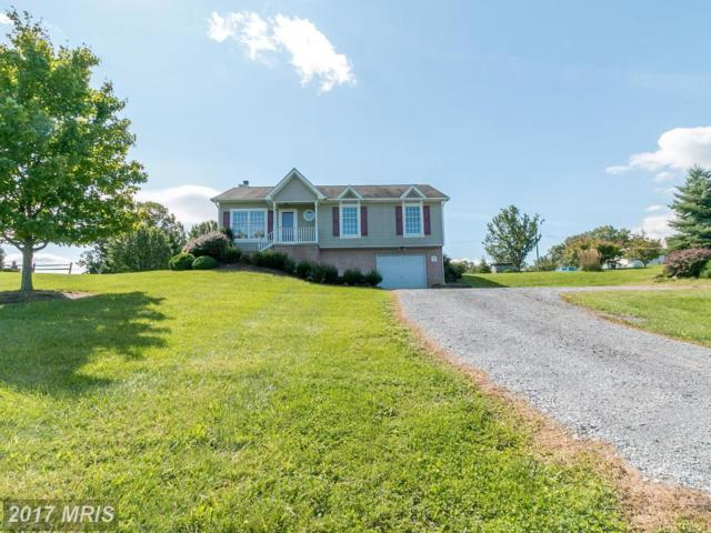 29 Mustang Drive, Falling Waters, WV 25419 (#BE10037281) :: Pearson Smith Realty