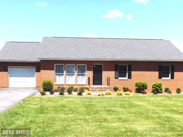 31 Rome Drive, Martinsburg, WV 25403 (#BE10039448) :: Pearson Smith Realty