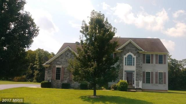 219 Dorchester Drive, Falling Waters, WV 25419 (#BE10039959) :: Pearson Smith Realty