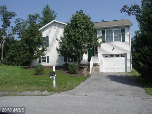 307 Veterans Way, Martinsburg, WV 25405 (#BE10061659) :: Pearson Smith Realty