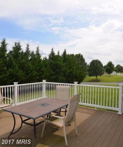 110 Dorchester Drive, Falling Waters, WV 25419 (#BE10067718) :: Pearson Smith Realty