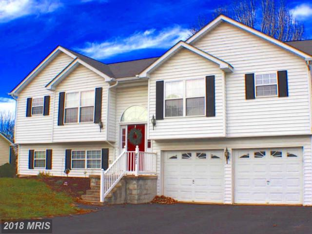 471 Thoreau Drive, Inwood, WV 25428 (#BE10108347) :: Pearson Smith Realty