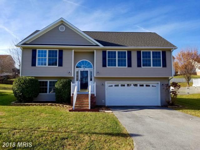 292 Talisman Drive, Martinsburg, WV 25403 (#BE10110677) :: Pearson Smith Realty