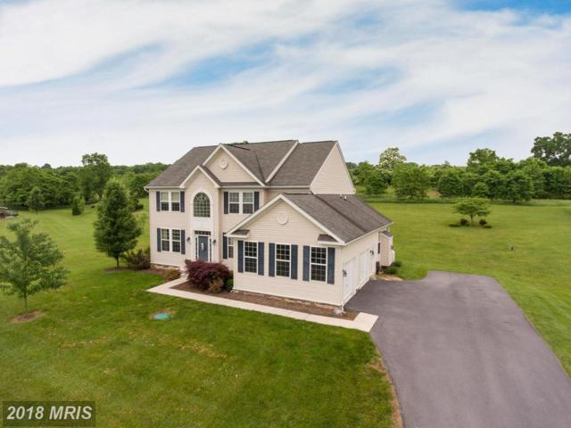 74 Hewitt Drive, Martinsburg, WV 25403 (#BE10239871) :: The Gus Anthony Team