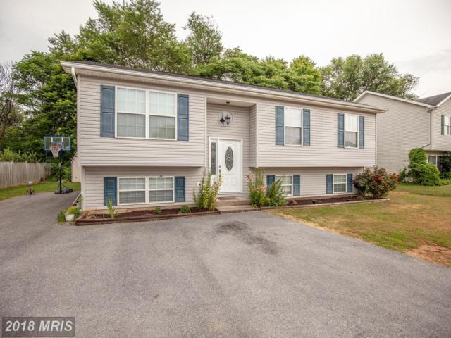241 Good Dr, Martinsburg, WV 25405 (#BE10295013) :: Pearson Smith Realty