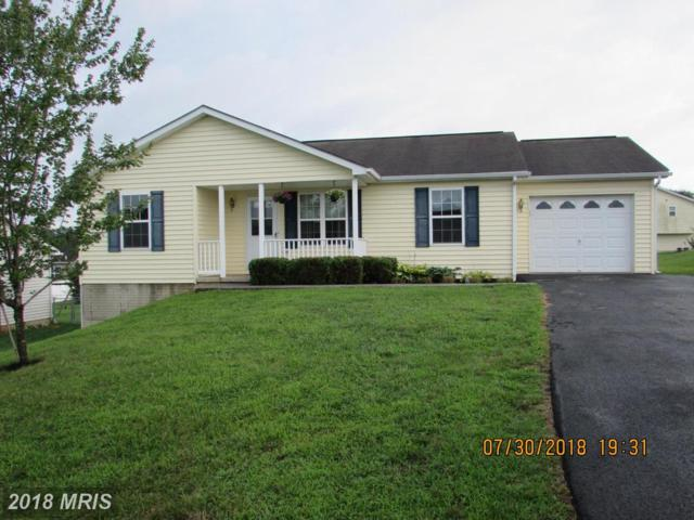 59 Raider Lane, Martinsburg, WV 25403 (#BE10312759) :: Bob Lucido Team of Keller Williams Integrity