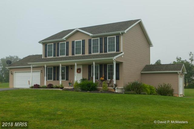 258 Chisholm Drive, Hedgesville, WV 25427 (#BE10332534) :: The Bob & Ronna Group