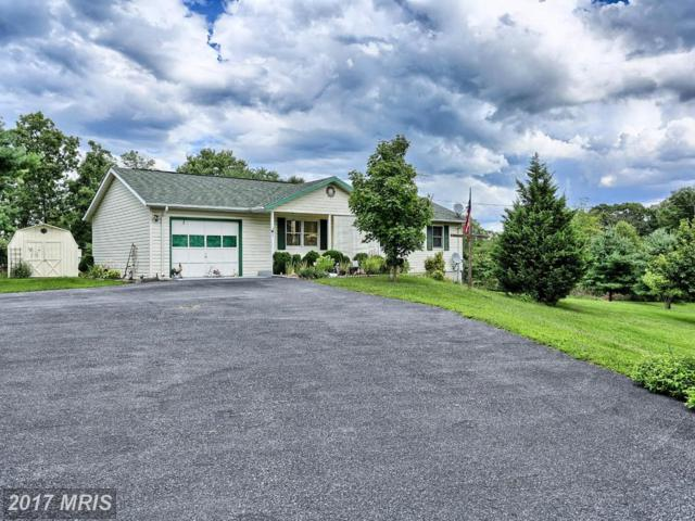 365 Avondale Road, Martinsburg, WV 25404 (#BE9850171) :: Pearson Smith Realty