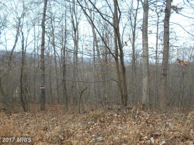 Vulpine Drive, Gerrardstown, WV 25420 (#BE9855134) :: Pearson Smith Realty