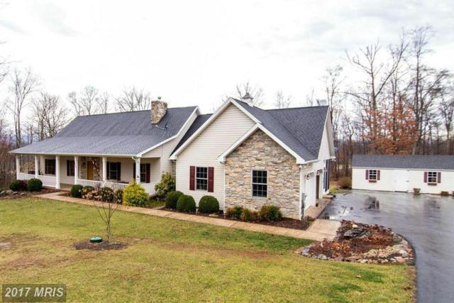 163 Simply Ashley Court, Hedgesville, WV 25427 (#BE9874551) :: LoCoMusings